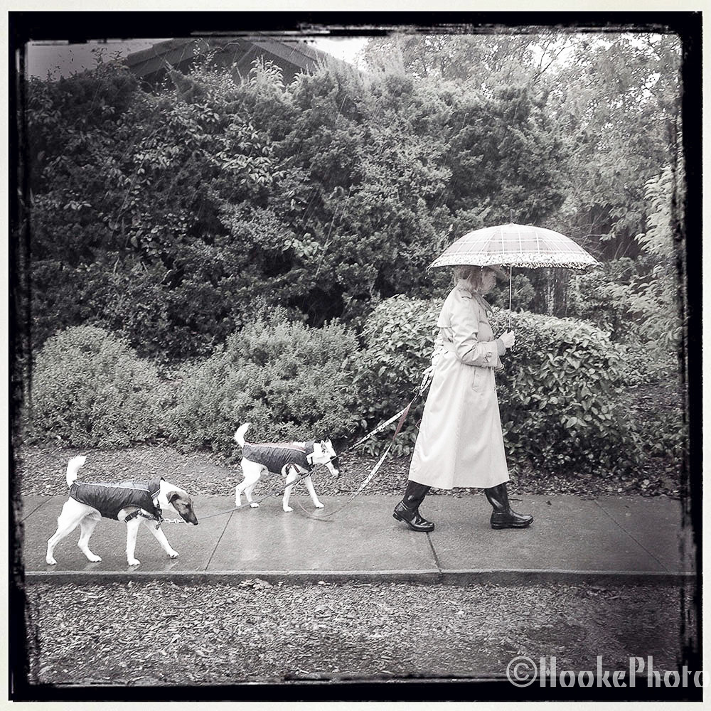 RainyWalk.jpg